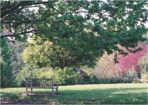 Arboretum Shade