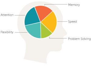 Lumosity Brain Graphic
