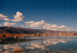 mono lake reflection