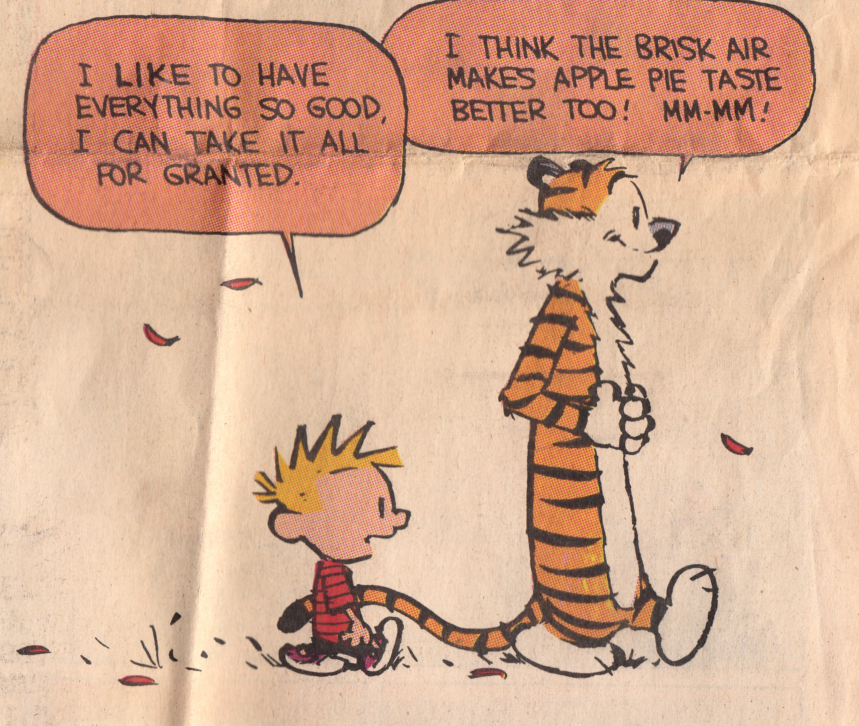 Calvin And Hobbes Quotes On Happiness