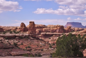 Canyonlands Needles & I 70 280