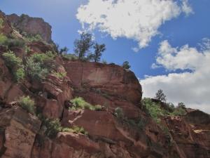 Zion & Kolob Canyons 012