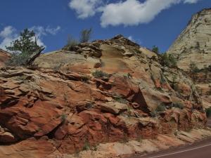Zion & Kolob Canyons 058