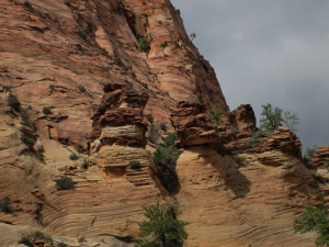 Zion & Kolob Canyons 094