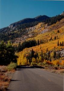 Bishop road