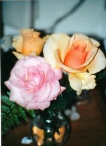 in a vase