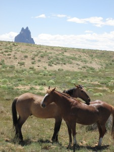 Shiprock National Monument in the Background