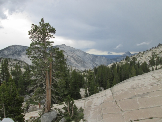 From Olmsted Point the North Side of Half Dome is VIsible