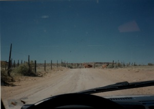 chaco road in 1