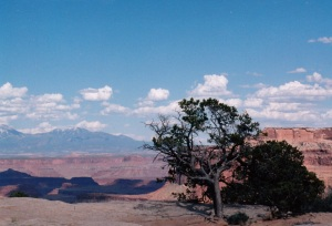 Canyonlands, Island in the Sky Section, Utah