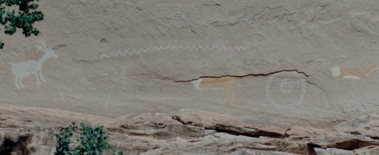 pictographs stray