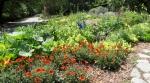 Descanso Gardens 048