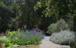 Descanso Gardens 061