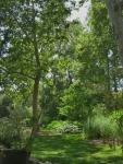 Descanso Gardens 099
